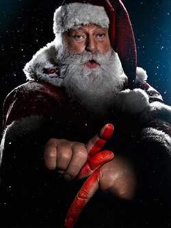 Specialized Santa
