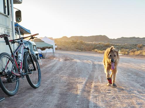 TT FatCyclist 136